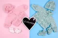 欢迎到新出生的婴孩孪生 免版税库存图片