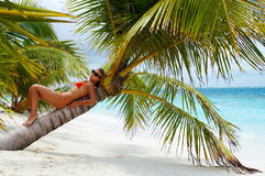 欢迎的海岛天堂 免版税库存照片
