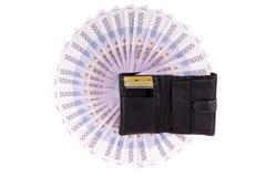 欧元图象钱包 库存图片