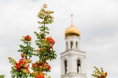 欧洲花楸和东正教的成熟橙色莓果在背景中 翼果,俄罗斯城市 iversky修道院 库存照片