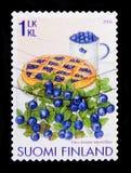 欧洲蓝莓牛痘myrtillus,莓果serie,大约2006年 库存照片