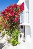 欧洲 希腊 cyclades Mykonos海岛 在狭窄的街道上的一个典型的希腊房子有阳台、开花的九重葛和白色的 免版税库存图片