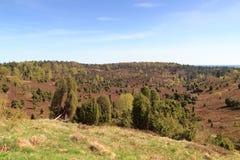 欧石南丛生的荒野对水池Totengrund的全景视图在Wilsede,德国附近的Luneburg荒地 库存图片