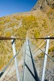 欧罗巴桥梁,最长的吊桥 免版税库存照片