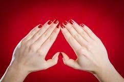 欧洲妇女显示手并且做心脏形状 库存图片