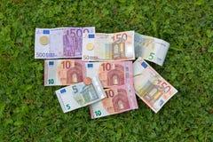 欧洲货币在围场铸造在新鲜的绿草的钞票 库存图片