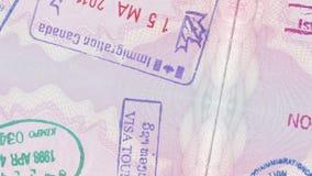 欧洲护照 股票录像