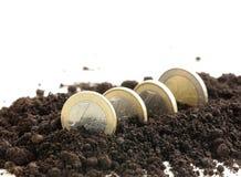 欧洲硬币从地面增长 免版税库存图片