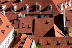 欧洲红色屋顶  库存图片