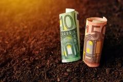 欧洲钞票兑现在土壤地面,在农业的收入的金钱 库存图片