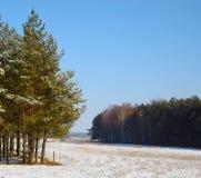 欧洲风景在3月:在领域解冻的雪开始 免版税图库摄影