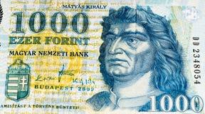 欧洲currancy钞票 免版税库存照片