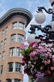 欧洲gastown旅馆温哥华 库存图片