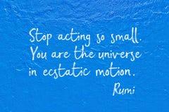 欲死欲仙的行动Rumi 免版税库存照片