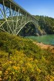 欺骗通行证国家公园,华盛顿 免版税库存图片