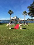 歌剧院婚礼之日视图  库存图片