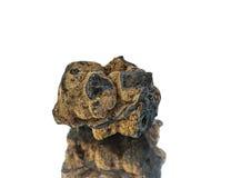 歌德是黑人魔术师的石头 免版税库存图片