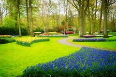 正式春天庭院 免版税库存图片