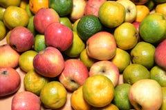 正是季节的苹果计算机和的桔子 库存照片