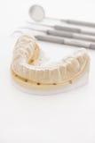 正牙学塑象 库存图片