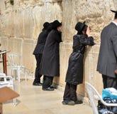 正统hassidic宗教犹太人在黑传统成套装备穿戴了祈祷在哭墙 免版税库存照片
