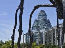 正面图通过加拿大的全国美术馆蜘蛛雕象的腿  库存图片