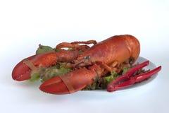 正餐龙虾 库存照片