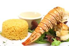 正餐龙虾 免版税库存图片