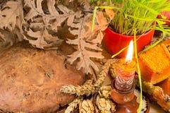 正统圣诞节奉献物用生长麦子 免版税库存照片