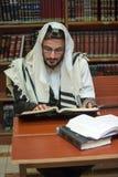 正统犹太人学会摩西五经 免版税库存照片