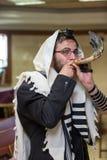 正统犹太人打击羊角号 免版税库存照片
