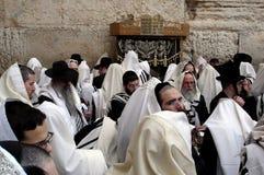 正统犹太人祈祷在西部墙壁在耶路撒冷Israe 图库摄影