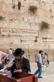正统犹太人祈祷在西部墙壁,耶路撒冷 免版税图库摄影