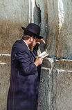 正统犹太人祈祷在西部墙壁 免版税库存图片