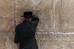 正统犹太人祈祷在西部墙壁 免版税库存照片