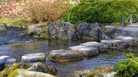 步向庭院环境美化扔石头 图库摄影