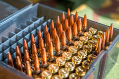 步枪和手枪子弹 免版税库存图片
