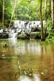 步瀑布在热带森林里 图库摄影