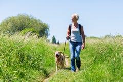 步行与在风景的狗的成熟妇女 免版税图库摄影
