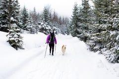 步行与狗, Karkonosze山,波兰的妇女 免版税库存照片
