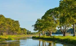 步行和海岛的看法的一美好的天约翰的S 缓慢的泰勒公园,佛罗里达 免版税库存照片
