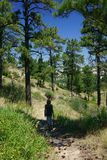 步行在一个遥远的山行迹的妇女 库存照片