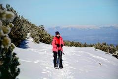 步行在一座高冬天山的旅游妇女 图库摄影