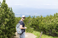 步行在一座高山的年轻人,在杉木森林里 图库摄影