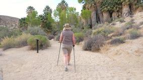 步行在与棕榈树的绿洲的活跃妇女在莫哈维沙漠 影视素材