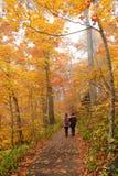 步行在五颜六色的秋天公园的姐妹 库存图片