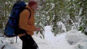 步行在冬天森林里的背包徒步旅行者 股票录像