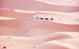 步行在尔格沙漠在摩洛哥  免版税图库摄影