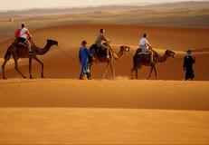 步行在尔格沙漠在摩洛哥 免版税库存照片