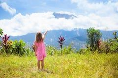 步行在山的孩子 哄骗迁徙的密林 免版税库存图片